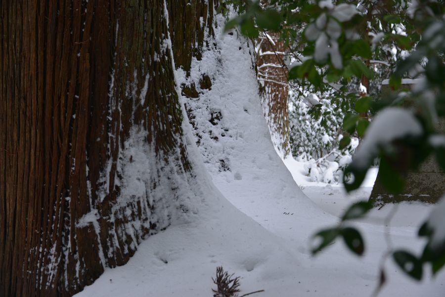 吹雪の痕跡-1