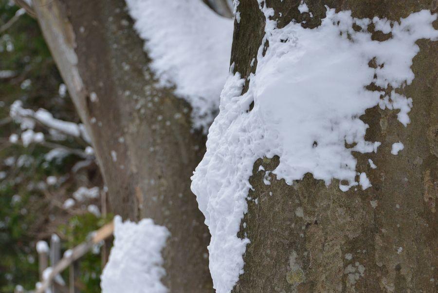 吹雪の痕跡-5