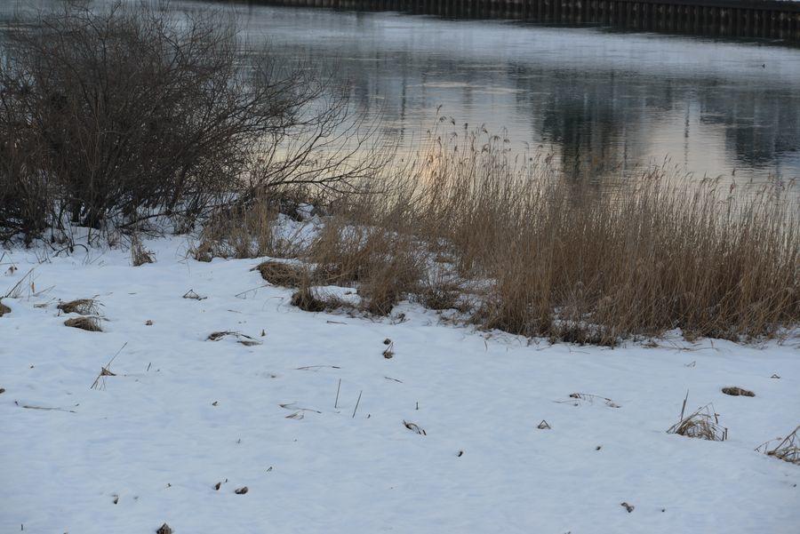 冬の河-2