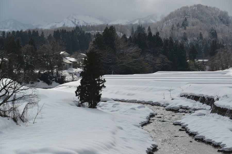 雪の守門川-3