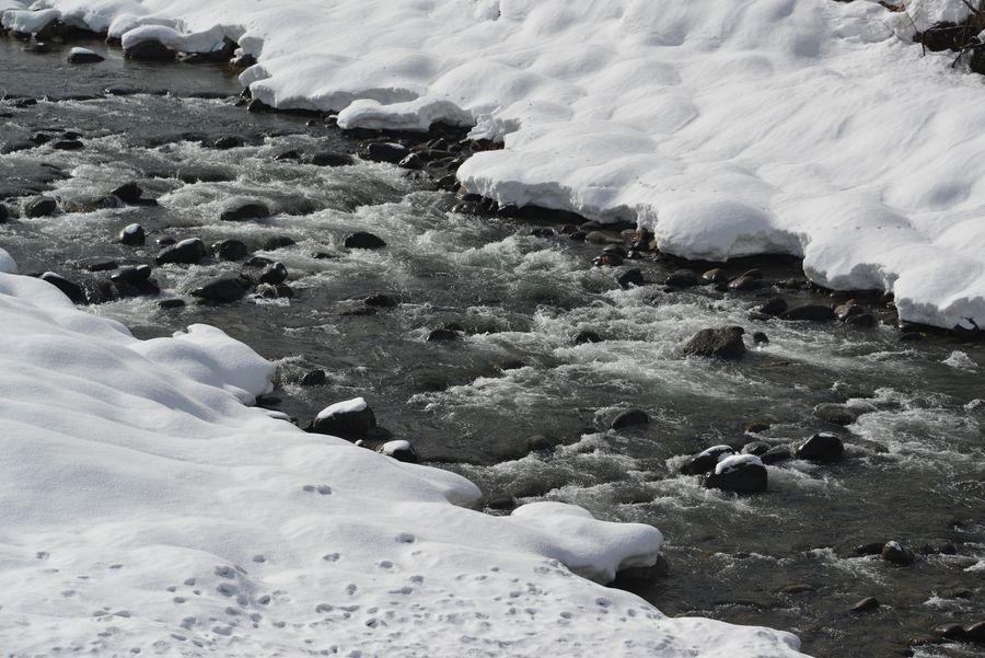 雪の守門川-5