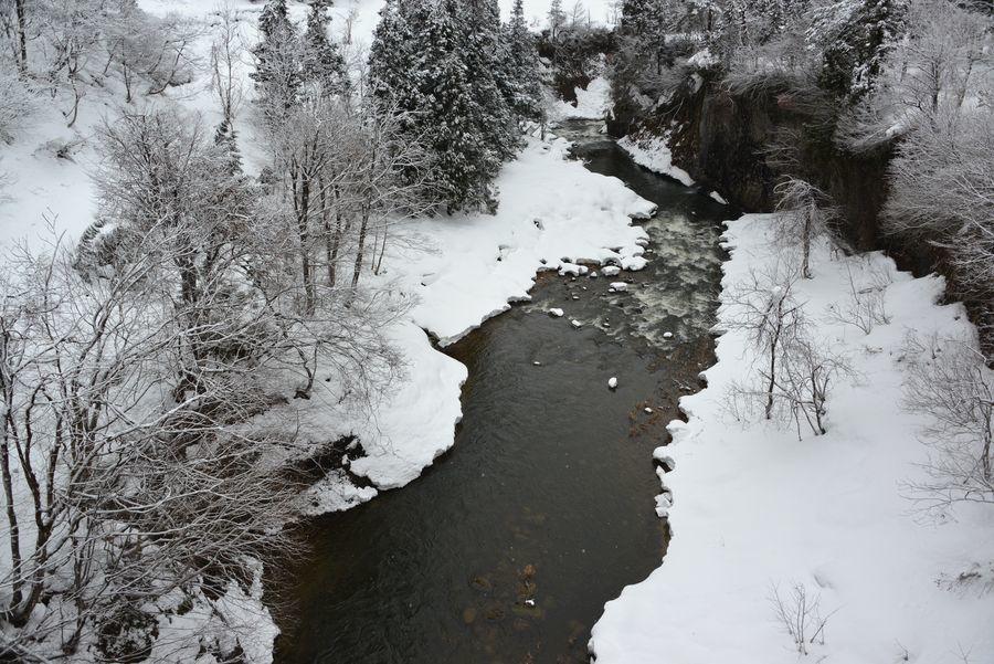 橋の上から 渓谷-2