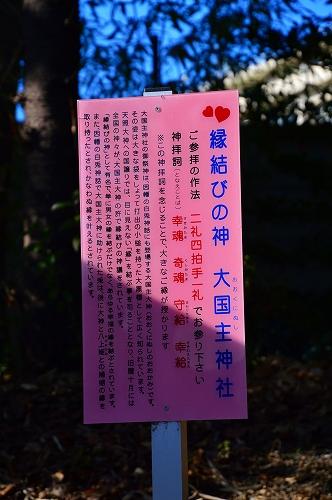 DSC_八0391