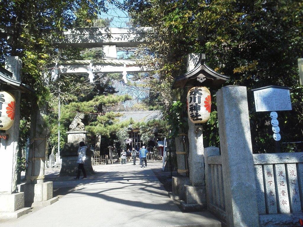 F1000063平成29年初詣石神井氷川神社