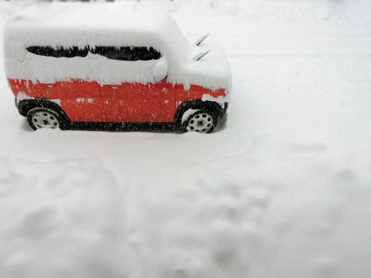 雪にしずむ