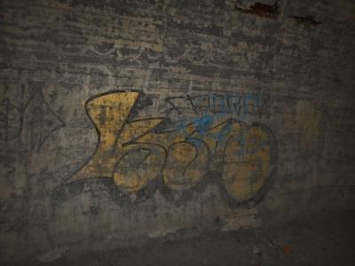 DSCN3342.jpg
