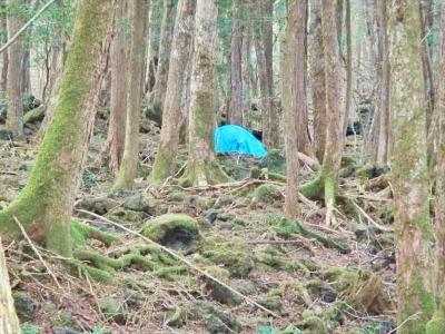 satsueihiwa027.jpg