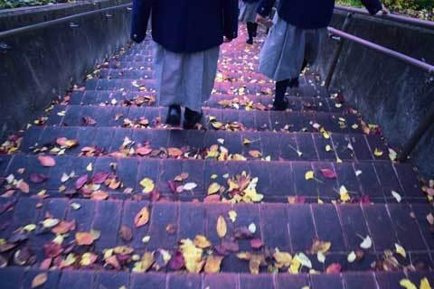 被昇天子最後の秋