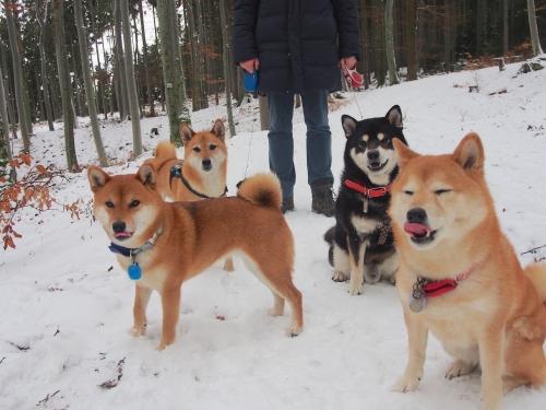 雪山で4柴記念撮影