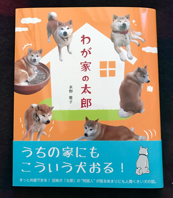 book_taro01.jpg