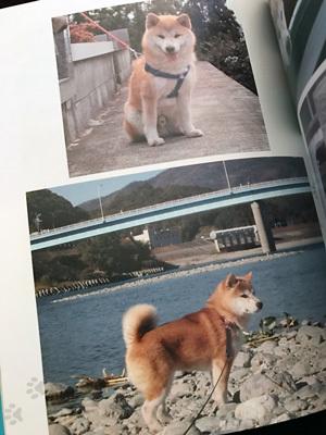 book_taro02.jpg