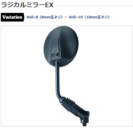 raex.jpg