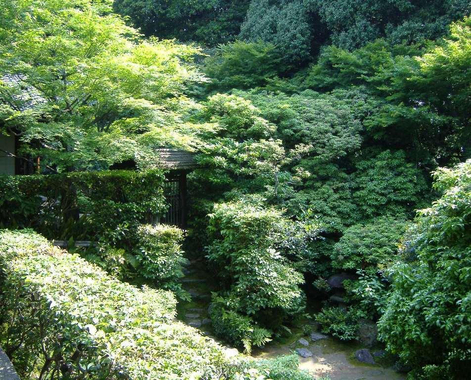 桂春院_思惟の庭