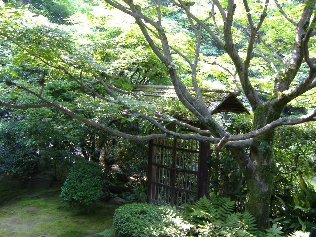 桂春院_侘の庭