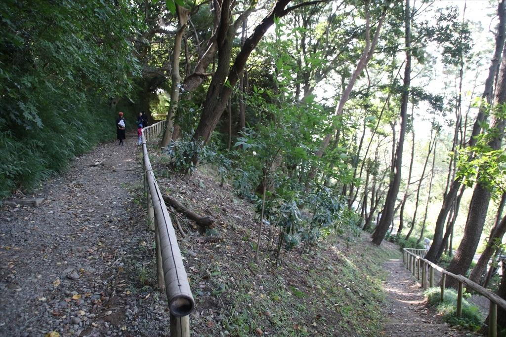 三重塔などがある丘に上る_1