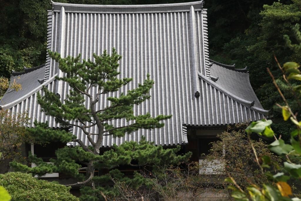 旧燈明寺三重塔【重要文化財】_6