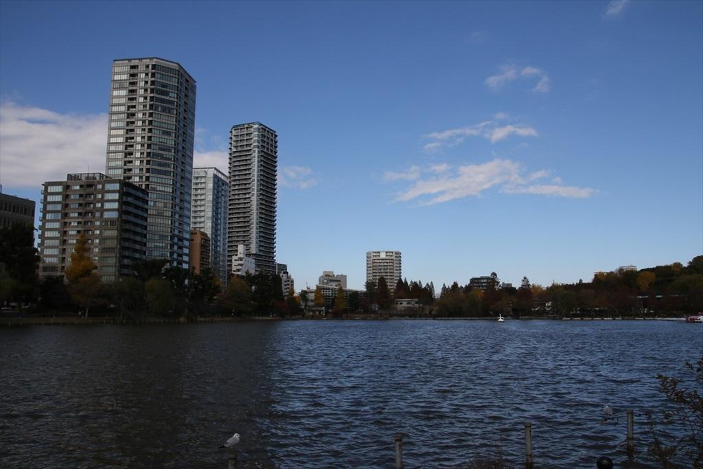 不忍池と池越しの光景_6