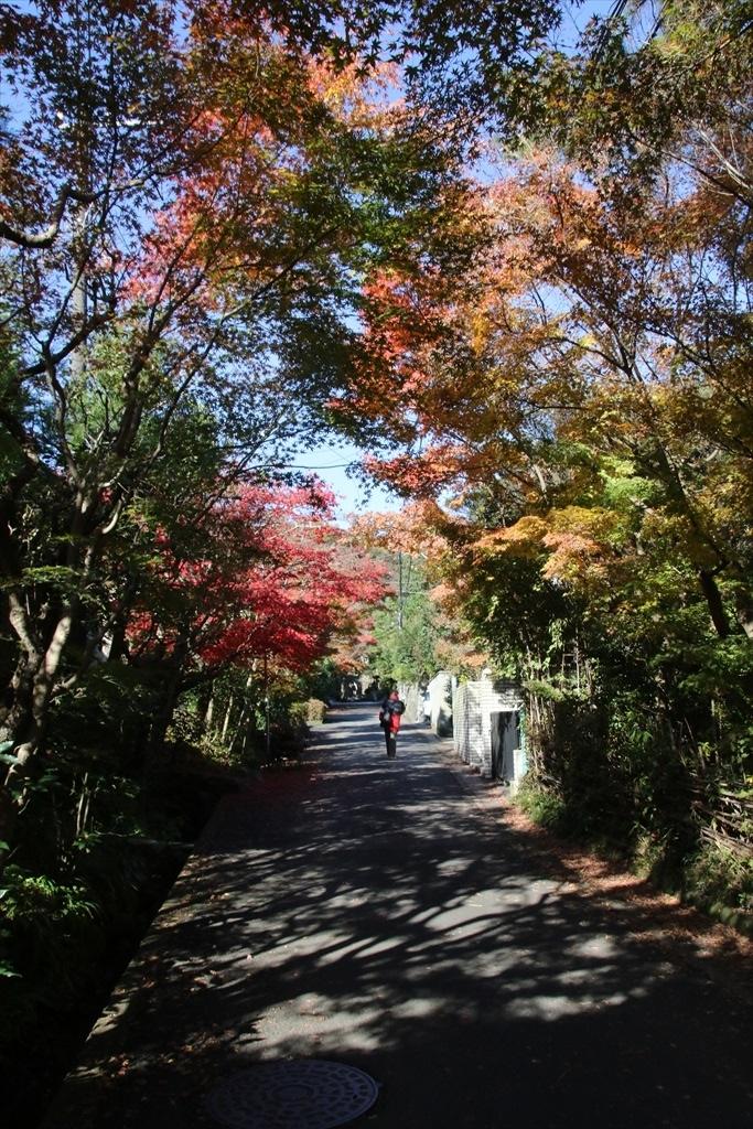 海蔵寺への道筋_1