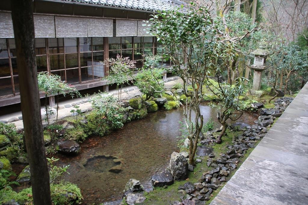 渡り廊下脇の小さな池_1