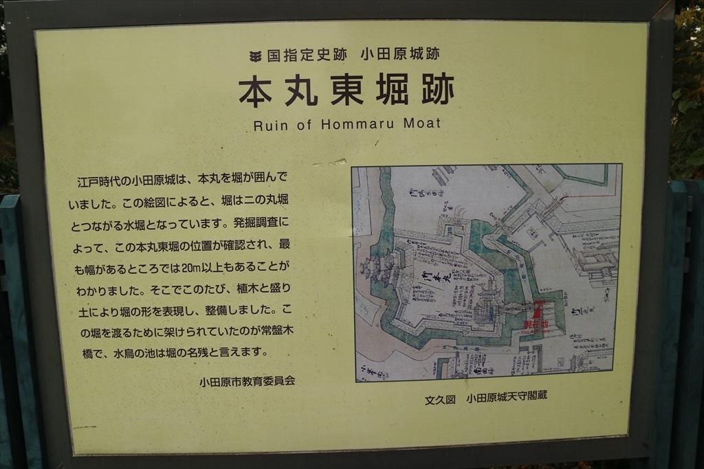 本丸東堀跡と常盤木橋_3