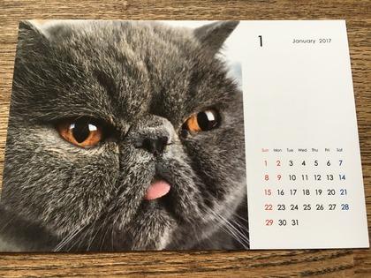 今年のカレンダー1月は平蔵君