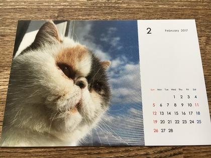 2月のカレンダーはあずきちゃん