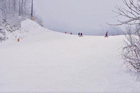 201701_snowboard11.jpg