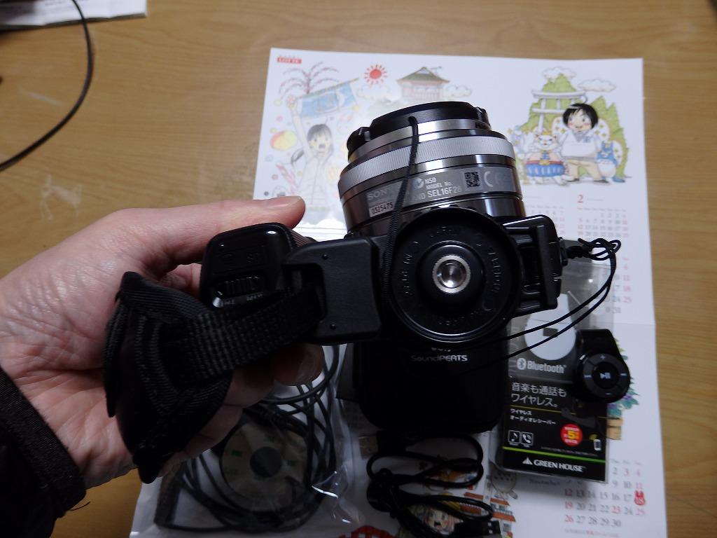 P2040118.jpg