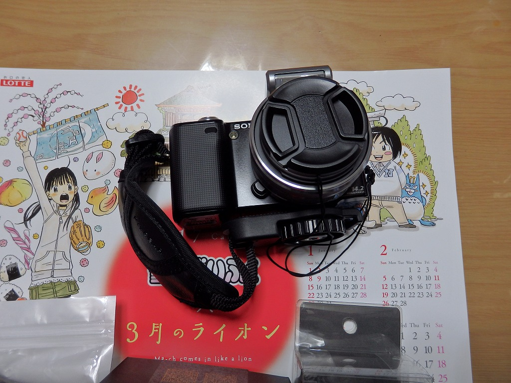 P2040119.jpg