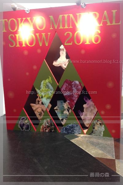 東京ミネラルショー 20161203