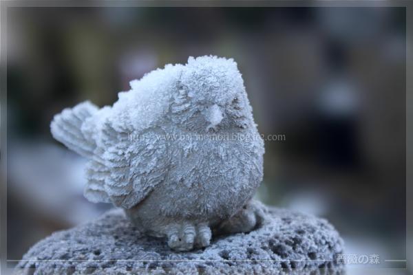 霜 小鳥 オブジェ 20161125