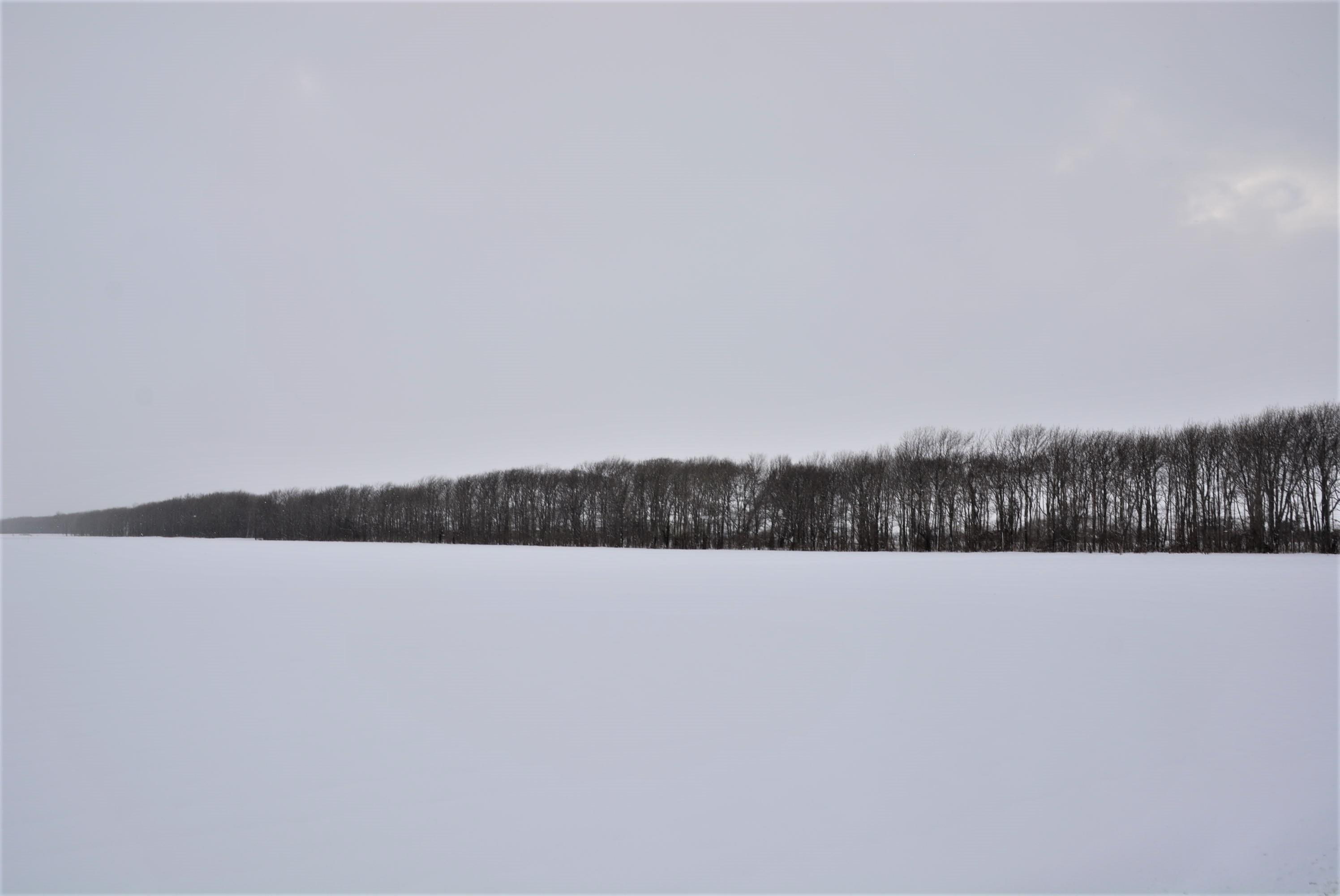 20161228-1.jpg