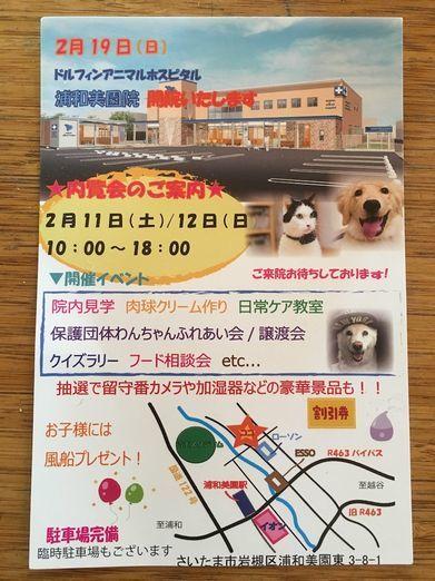 saitama_img0.jpg