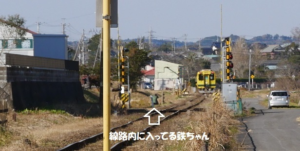 P1010708.jpg