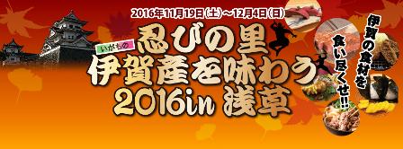 201611iga1.png
