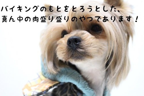 IMG_1043.jpg