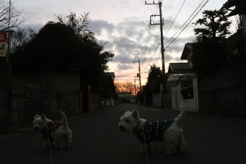 kuchikaradetakusuriwojibundenomu1.jpg