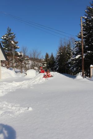 スキーの練習1
