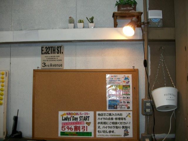 IMGP1583.jpg