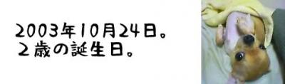 508-4.jpg