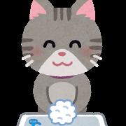 ネコ(手洗い