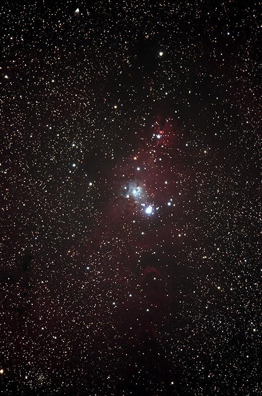 クリスマスツリー星団_NGC2264.jpg