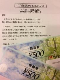 00065p (164)