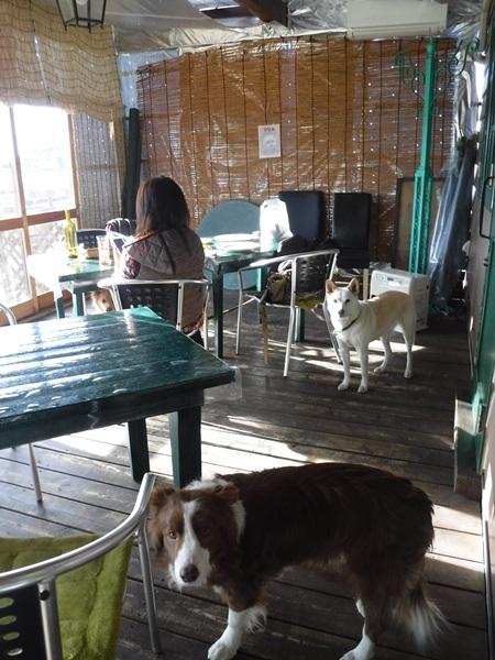 018カフェ