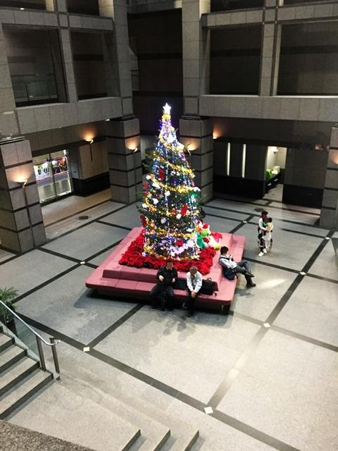 県庁イルミ2