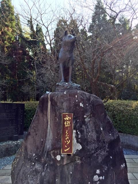 藤川天神9