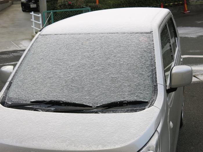 浜松 積雪 2017 1 15 1 7345