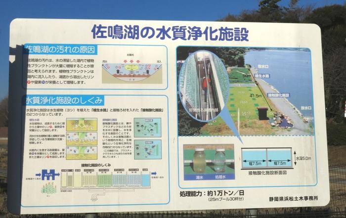 佐鳴湖 東岸 水質浄化装置の説明 2017 1 26 1 7435