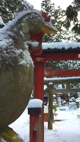 中野神社 (5)_500