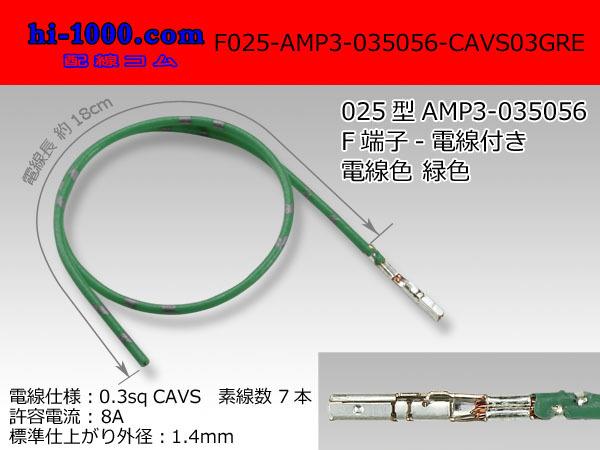 f025-amp3-cavs03gre.jpg